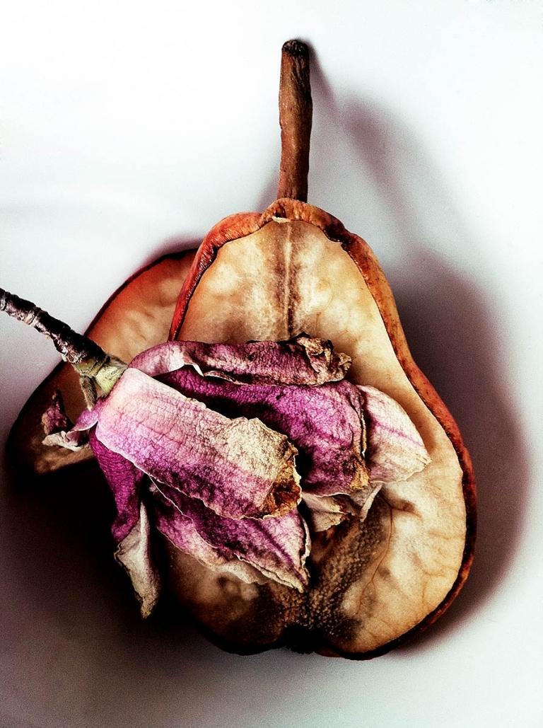 JOHNNY GIUNTA Pear + Flower