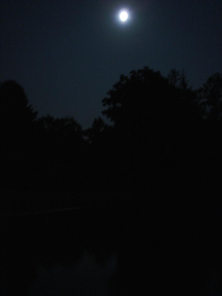 JOHNNY GIUNTA Moonrise